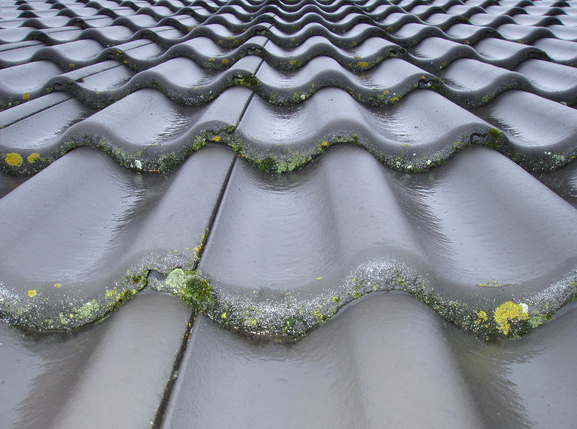 commercial tenant roof leak property management guide
